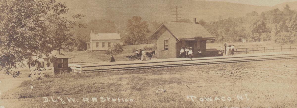 Vintage Postcard Collector